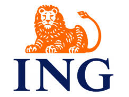 The AccelerationGroup ING